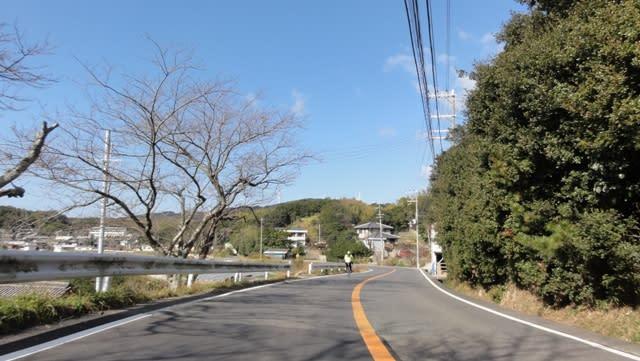 2011初乗りin淡路島 - 木漏れ日の中で/自転車と共に♪