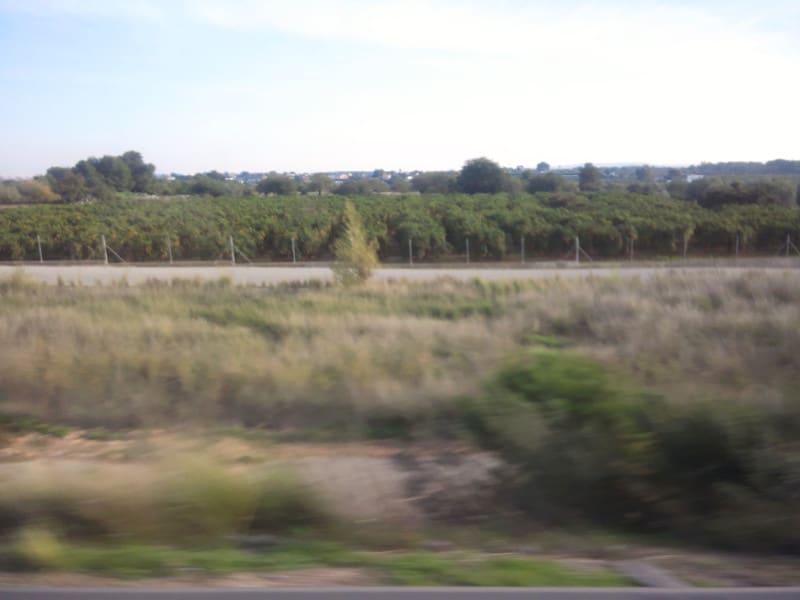 バレンシアに到着!