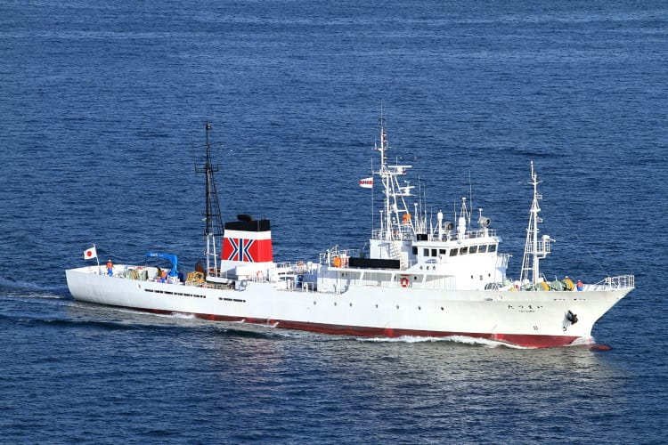 水産庁 漁業取締船 「 たつまい ...