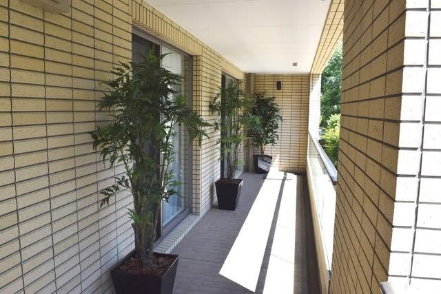 ベランダ おしゃれな 人工観葉植物 アラレア
