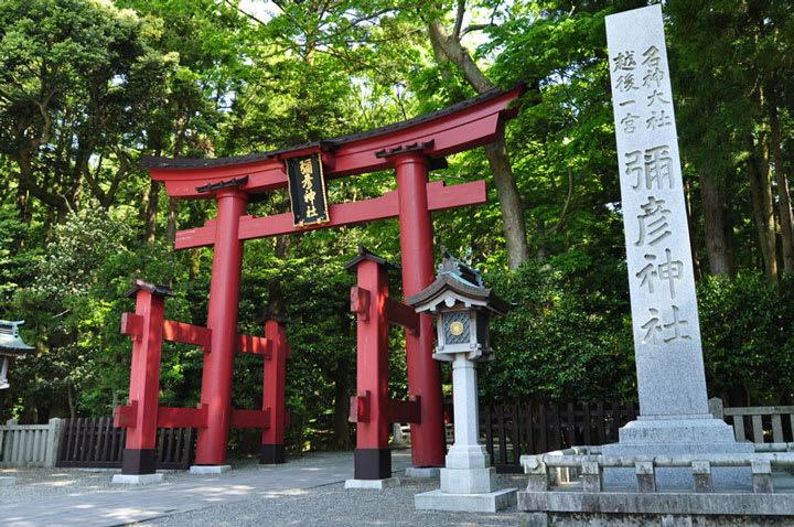 彌彦神社(新潟県弥彦村) - 九...