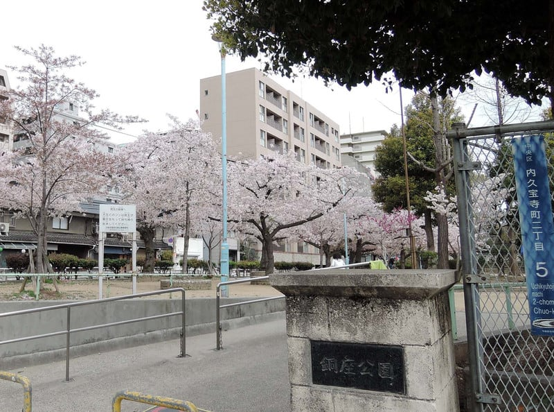 Cherry_blossoms_with_doza_park_sign