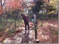 ③園路の落ち葉の回収
