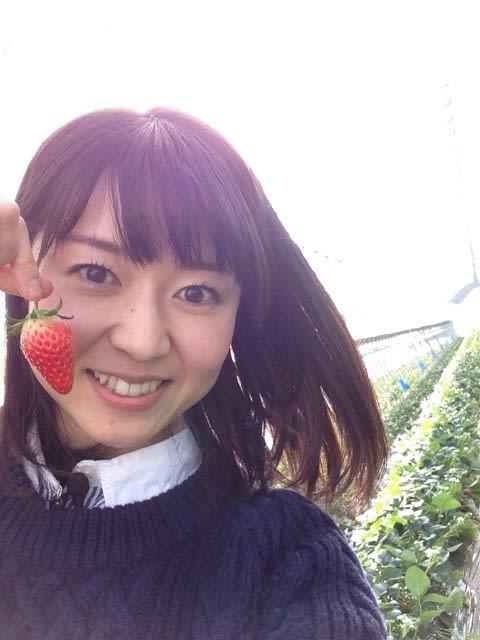 ミストリー 横浜 鈴木裕子 (アナウンサー)