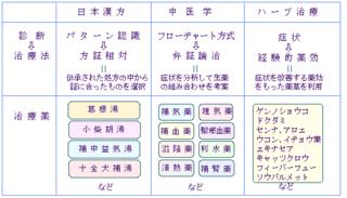 問診   わたしの中医学 - Part 4