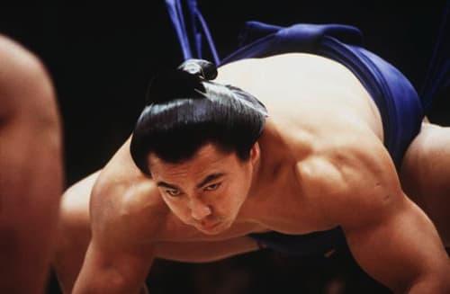 千代の富士の肩