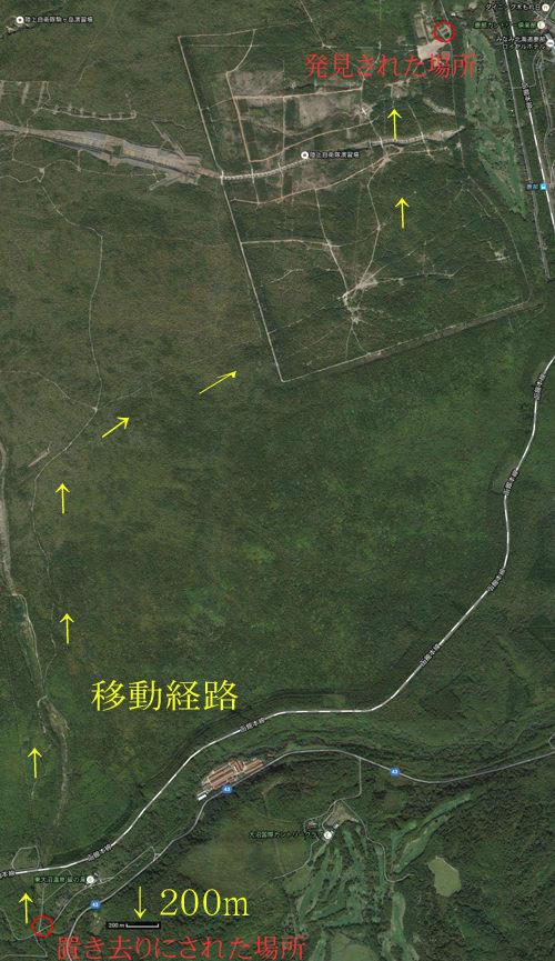 ワカサギ 秋の輝き 大沼で漁解禁:北海道 ...