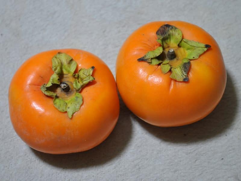 10月29日 柿