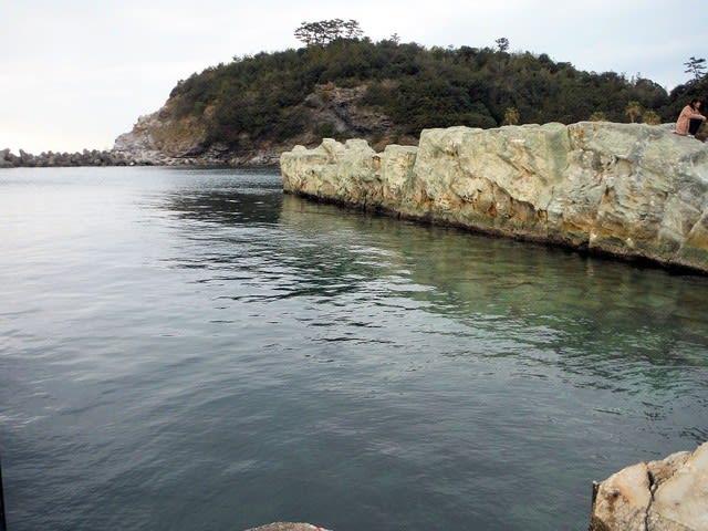 漁港 釣り 田ノ浦
