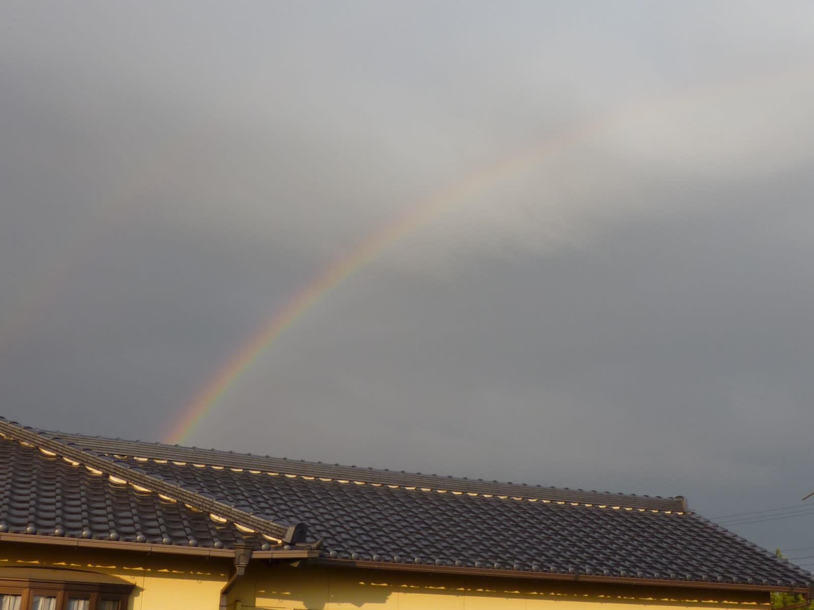 虹がの画像