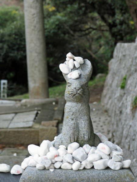 白兎神社にて