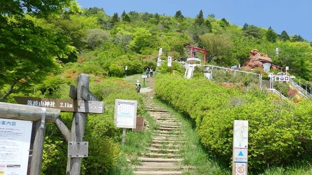 つつじヶ丘からの登山道