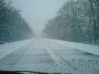 氷点下には耐えられなかったようで、雪が積もっています。ちょこっとブレーキを踏んだら、45度程車体が傾きました。
