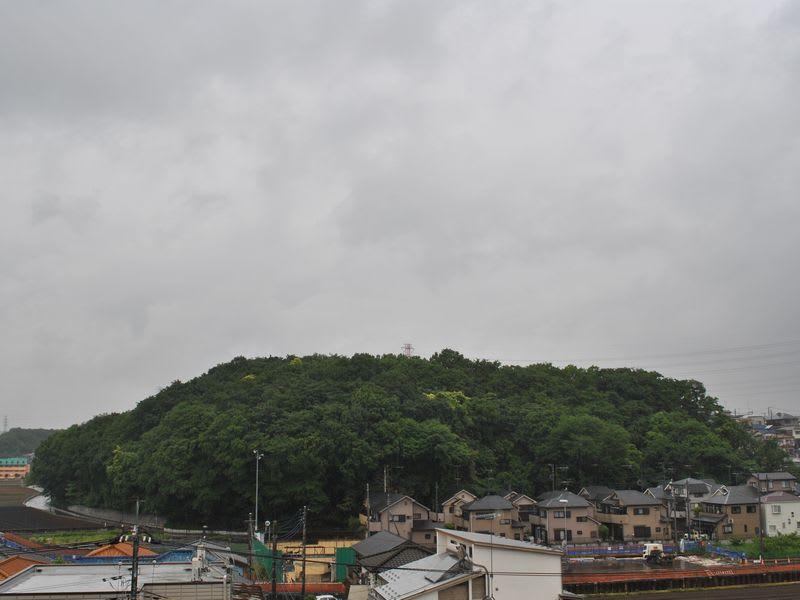 05月23日 雨の根岸台
