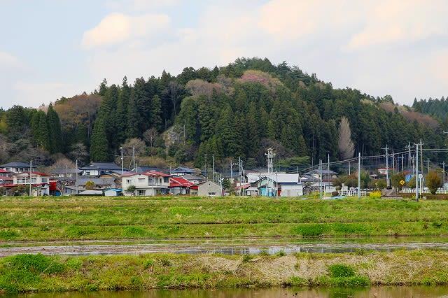 「那須町」のブログ記事一覧(2ページ目)-栃木の木々