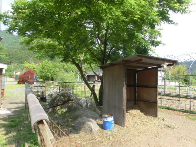 ヤギの小屋