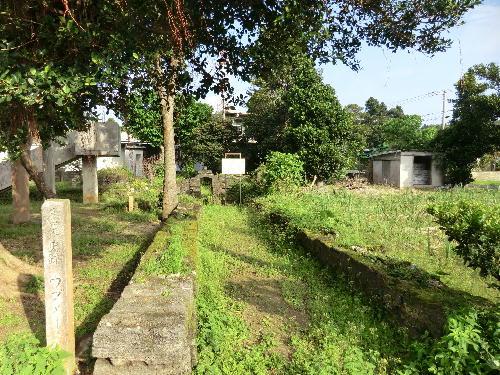 2012年3月のブログ記事一覧-沖縄...