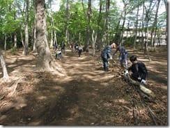 ②独歩の森の通路整備