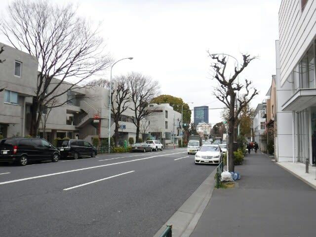 西郷山公園/菅刈公園(東京都目黒区)