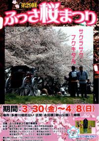 29th_hanamaturi