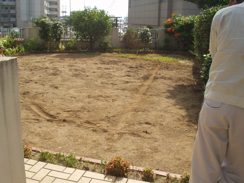庭園改修現場5