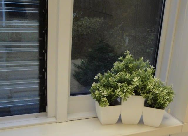 窓辺飾った フェイクグリーン造花
