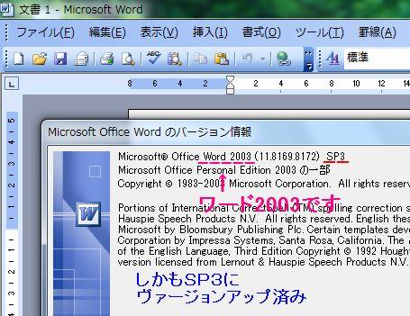 窓の杜 - 【NEWS】マイクロソフト、Office 2003の …