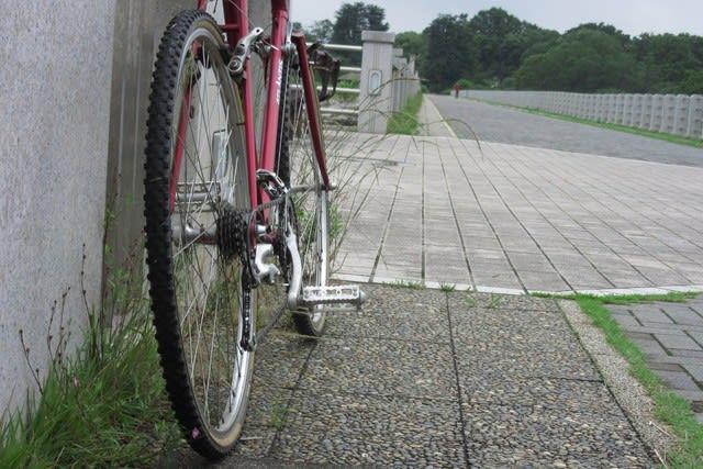 多摩湖 狭山湖 ランドナー サイクリング