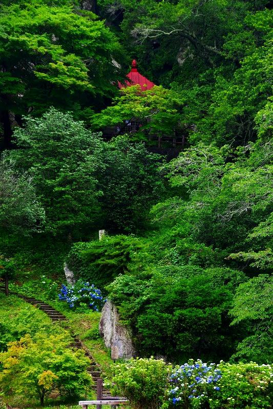「那須町」のブログ記事一覧-栃木の木々