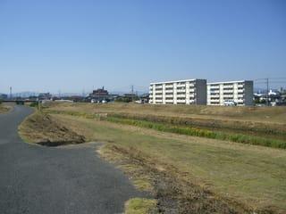 高屋川沿いの風景