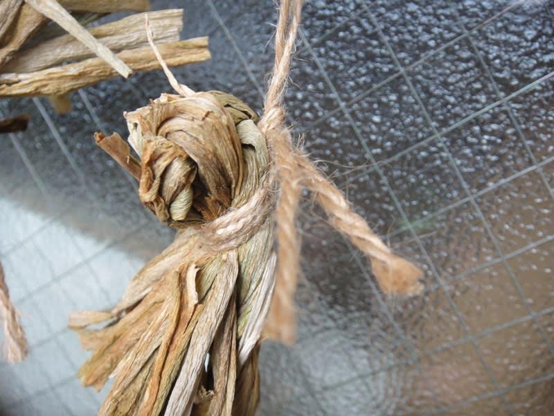 三つ編みタマネギ