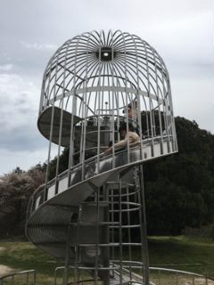 公園 鉢 が 峰
