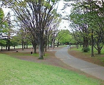 ジオキャッシング「Koganei Park」