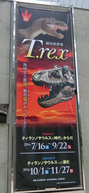 群馬県立自然史博物館の特別展示企画