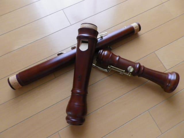 Imgp4955