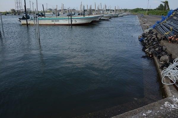 東京湾で青潮が発生 海が乳青色に - ウェザーニュース