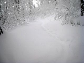 3合目から先は常にラッセル。冬山シーズンになると土日(?)は山岳パトが見回るようになるとか
