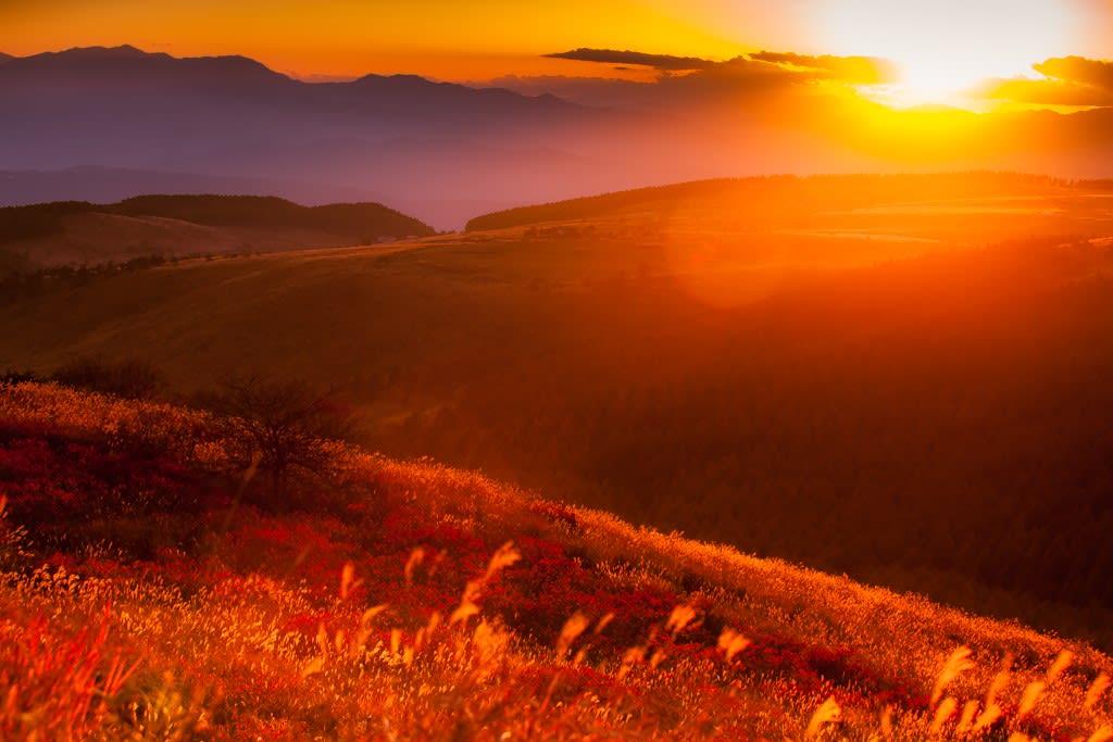 秋の夕日の写真