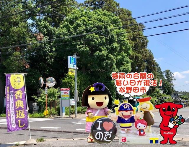 梅雨の合間の暑い日復活!
