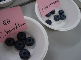 Chandler(チャンドラー)とHarrison(ハリソン)