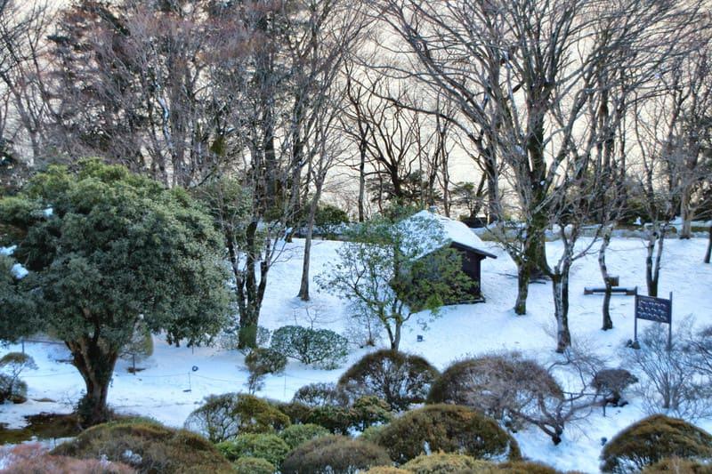 130120_garden