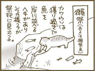 獺祭魚 - くるねこ大和