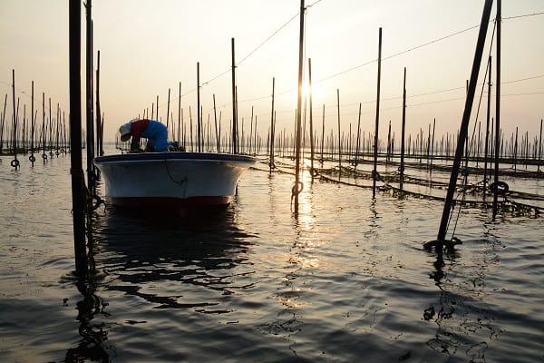 『赤潮』 - 環境汚染がもたらす赤潮の特徴と対策・ …