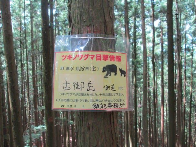 https://blogimg.goo.ne.jp/user_image/75/72/29255ec1412d4ed01c49ad3bbd626a85.jpg