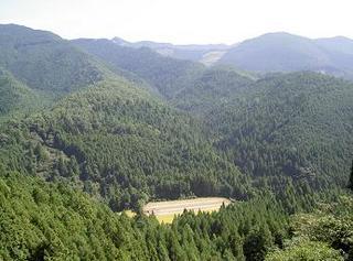 「野中の清水」から見える熊野の山々の中の水田