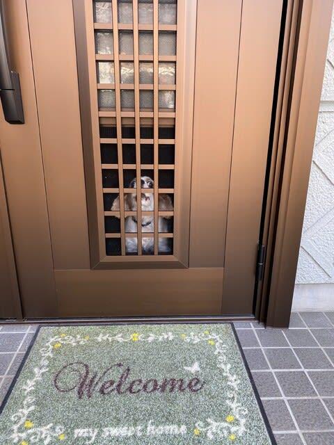玄関ドアリフォーム後の写真
