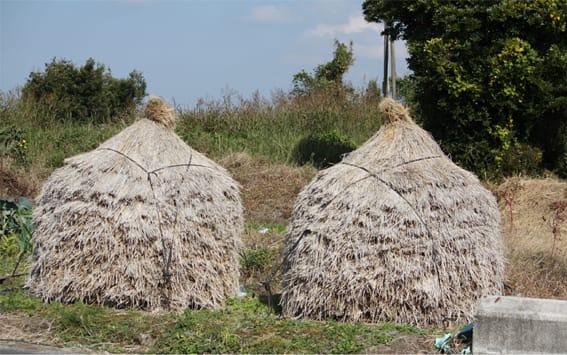 おにぎり2個の里みち歩き 農山漁村の今昔物語 Guide to Rural Life & Agriculture