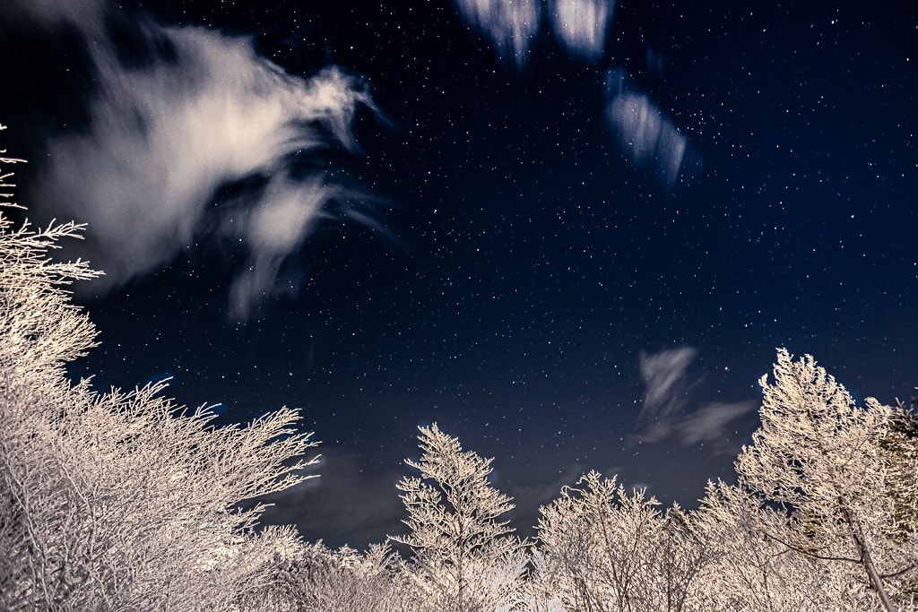 霧氷と星空の写真