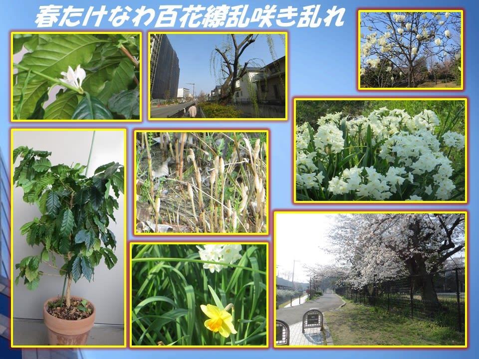 春はあけぼの 「春たけなわ百花...