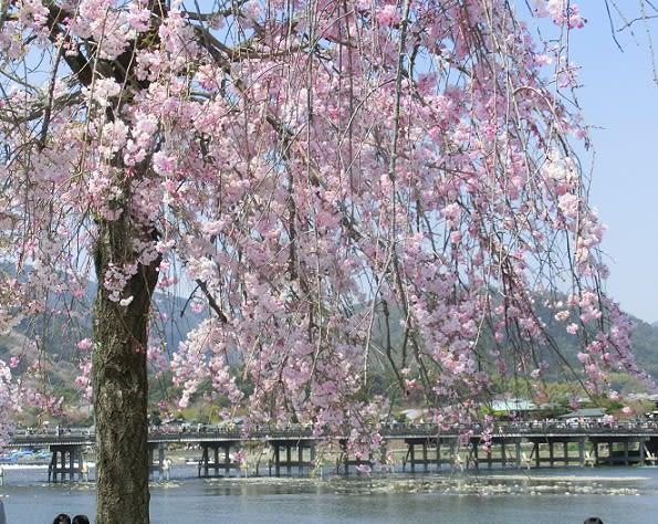 復興 嵐山 渡月橋 - 日々是好日